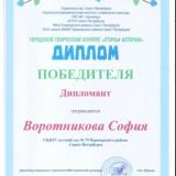 Достижения воспитанников_24